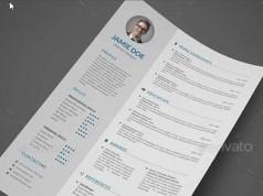 plantilla premium resume